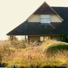 piet oudolf google search varsovia garden pinterest