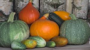 free images fruit food harvest produce vegetable autumn