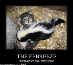 Febreze Meme - quick pass me the febreeze
