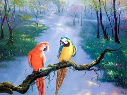 best painting parrot beautiful art painting hd wallpaper absract artworks