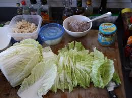 napa cabbage with chicken and sausage stir fry chef benny doro