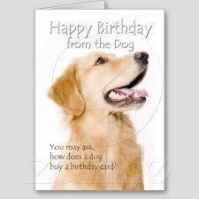 golden retriever birthday card golden retriever birthday card ever