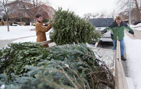 here s how you can dispose of your tree omaha metro