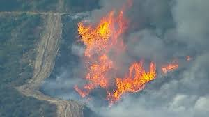 Wildfire La Area by Over 1 000 Firefighters Battle Against Largest Wildfire In Los