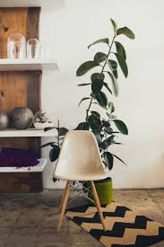 49 best modernica images on pinterest home architecture and
