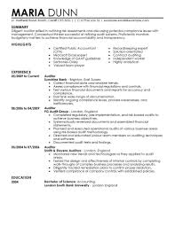 Resume Writing Certification Online by Best Auditor Resume Example Livecareer