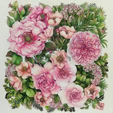 Beautiful Flowers Beautiful Flowers Regrann From Cherrycolours