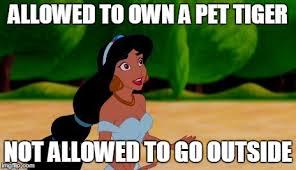 Princess Jasmine Meme - image tagged in princess jasmine imgflip