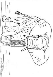 african animals coloring pages 44 wild animals