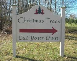 200 best tree delivery images on
