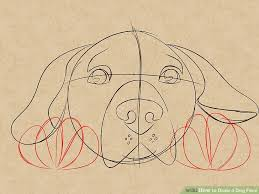 how to draw a dog face with pictures wikihow