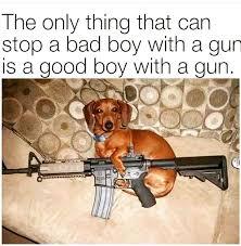 Meme At - good boy
