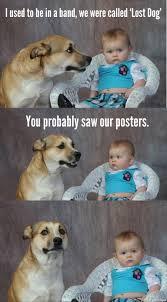 Lost Dog Meme - lost dog band dad joke dog know your meme