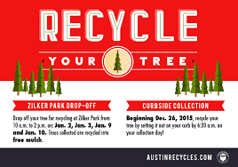 how to recycle your christmas tree u2013 do512 family