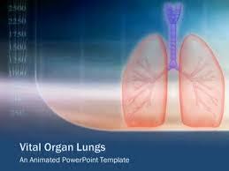 Powerpoint Design Lungs | vital organ lungs a powerpoint template from presentermedia com