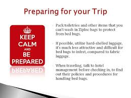 How To Avoid Bed Bugs 7 Best Travel Tips To Prevent Bed Bugs Images On Pinterest 3 4