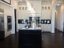 should i paint kitchen cabinets kitchen kitchen design trends maple shaker cabinets shaker