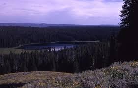 yellowstone national park beyond old faithful
