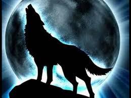 image howling wolf midnight moon jpg animal jam clans wiki