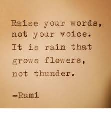 Rumi Memes - raise your words not your voice it is rain that grows flowers not