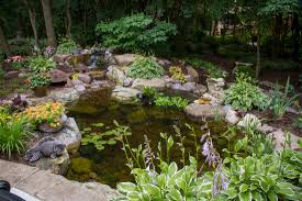 backyard ponds water gardens prices pricing denville morris county