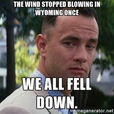 Wind Meme - the wind stopped blowing in wyoming once we all fell down forrest