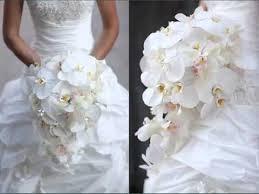 white bouquet orchids white bouquet set of pictures orchids white bouquet