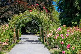 New Zealand Botanical Gardens Garden In Christchurch Botanic Garden New Zealand Stock