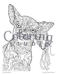 100 schnauzer coloring pages a coloring page of a dog virtren