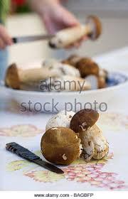 cap cuisine toulouse cap cuisine bordeaux egochef bandana de cuisine bordeaux with cap