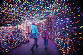 oregon zoo lights 2017 bigger than ever the portland observer