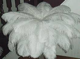 beautiful ostrich feather centerpiece kits best selection