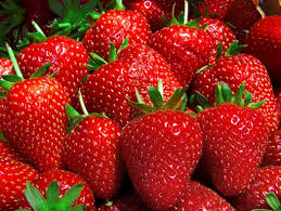 strawberry mignonette fruit seeds by kraft seeds amazon in