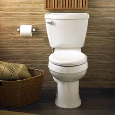 What Is The Meaning Of Bidet American Standard 4266 014 020 Champion 4 Toilet Tank With