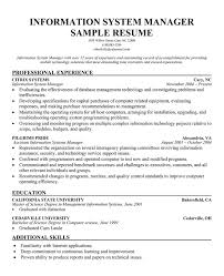 Information Technology Resume Objective Help With My Custom Research Paper Marriage Couple And Family