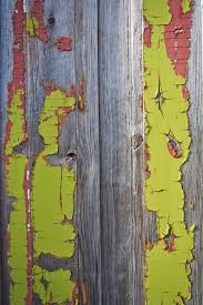 free images tree branch grungy wood grain texture plank