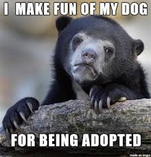 Keanu Reeves Conspiracy Meme - confession bear meme on making fun of your adopted dog
