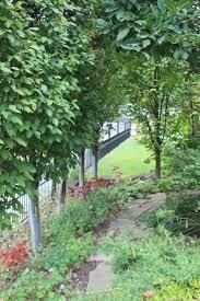 vertical gardening heartlandgardening