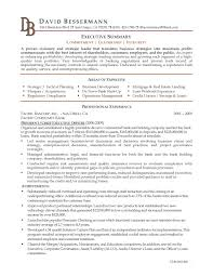 Executive Summary For Resume Examples by Resume Executive Summary Sample Free Resume Example And Writing