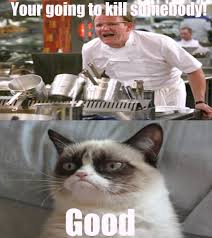 Gordon Ramsey Memes - 12 best gordon ramsay isms images on pinterest funny images funny