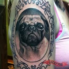 black and grey pug dog in frame tattoo on right shoulder