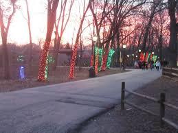 brookfield zoo winter lights lights on trees picture of brookfield zoo brookfield tripadvisor