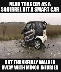 Car Wreck Meme - smart car accidentally hits a squirrel but don t worry the
