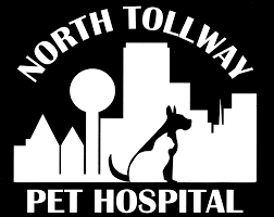 north tollway pet hospital veterinarian in dallas tx usa