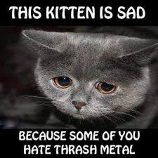 Sad Kitten Meme - iamrocker metalhead on twitter metal thrashmetal music funny