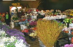 Wholesale Flowers Philadelphia - associated wholesale florist denver co 80223 yp com