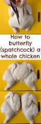 best 25 spatchcock chicken ideas only on pinterest lemon