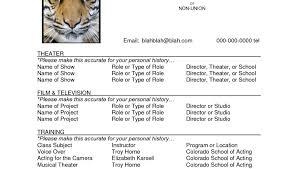 professional resume software resume writing programs resume template