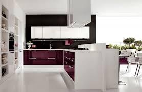 the kitchen collection uk kitchen extraordinary kitchen ideas kitchen designer on