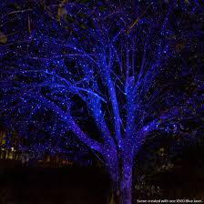 blue x500 laser light wintergreen corporation